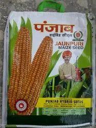 Punjab Hybrid seeds Maize seeds