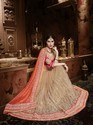 Designer Moti Work on Net Saree