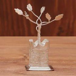 German Silver Tulsi Plant