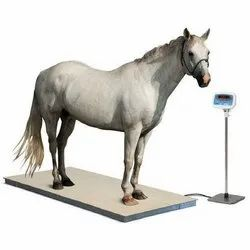 Eminent Mild Steel Animal Weighing Scale, KSP-1000kg, 100g Accuracy
