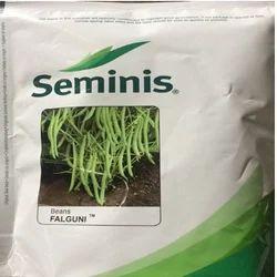 Seminis French Bean Seed Falguni