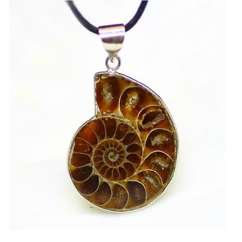 Ammonite pendant ratnon wala jhumka ammonite pendant aloadofball Images