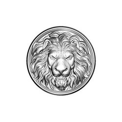 Lion Pattern Sheet Metal Components