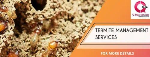 Best Termite Control Services Bhubaneswar Odisha In Jaydev Vihar Bhubaneswar Qmax Pest Control Id 22094818833