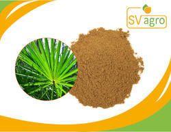 Saw Palmetto PE/ Serenoa Repens Extract