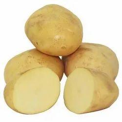 Organic Potato, Packaging Type: Gunny Bag, Packaging Size: 10 Kg,20 Kg