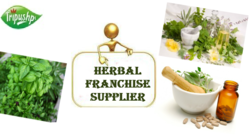 Ayurveda Pharma Franchise in Rewa