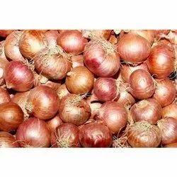 Dry Fresh Red Onion, Onion Size Available: Medium, Net Bag
