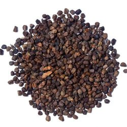 6 Months Black Cardamom Seed, Packaging Type: Packet, Packaging Size: 1 Kg