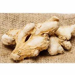 KGCPL Deluxe Quality Dry Ginger, 25 Kg