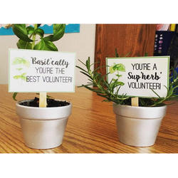 Corporate Plant Gifts Centerpieces