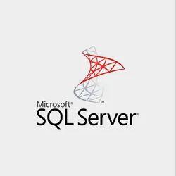 MSSQL Server Enterprise Software Technology Services