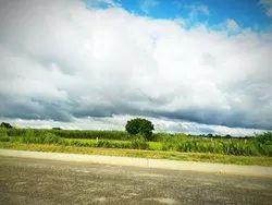 Real Estate Agent For Agricultural Land