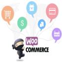 WooCommerce发展