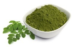 Curry Leaf Powder, Packaging: 20 Kg