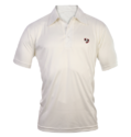 White 100% Polyester Knitted Fabric Sg Half Sleeves Cricket T-shirt