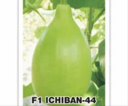 Bottle Gourd F1 Ichiban 44