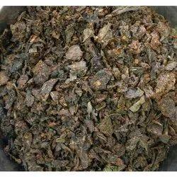 Dry Paan Sweet Mukhwas
