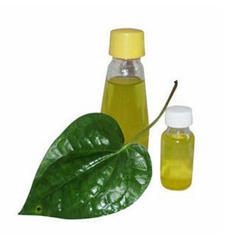 Zafari Leaf Absolute Oil
