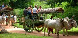 Village Tour Packages