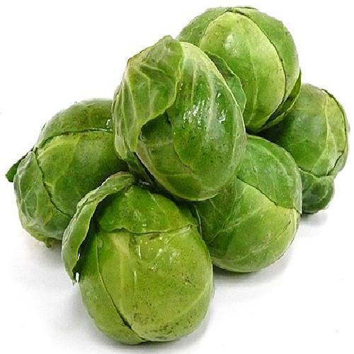 Brussel Sprouts Cabbage