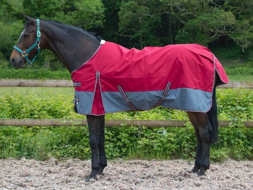 Waterproof Turnout Rug View Specifications Details Of