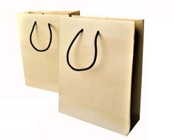 Paper Plain Bags