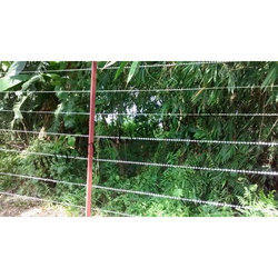 Tea Garden Razor Wire Fencing