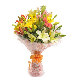 Multicolor Lovely Lilies Flower