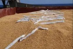Grain Warehouse Fumigation Service