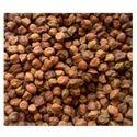 Indian Brown Chana Dal, Organic