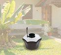 Garden Mosquito Traps
