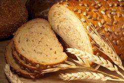 Bread Testing Laboratory