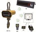 Wireless Indicator Crane Scale