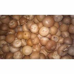 Natural Areca Nut