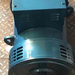 Wind Turbine Permanent Magnet Alternator