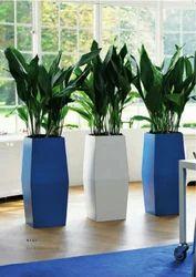 FRP Iris Planter