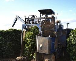 Coffee Harvester Machine