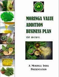 Moringa Value Addition Business Plan 100 ha