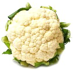 Cauliflower Fresh, Packaging: Jute bag