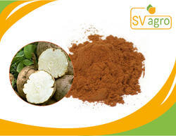 Pueraria Extract