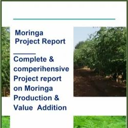 Moringa Project Report From Farming To Value Addition