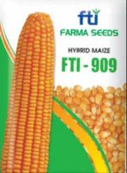 FTI -909 Hybrid Maize Seeds