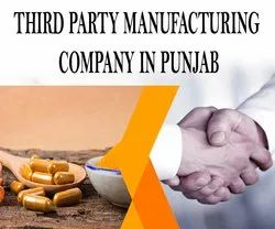 Third Party Manufacturing Company In Punjab