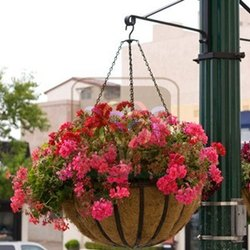 Coco Basket Hangers In Lamp Post