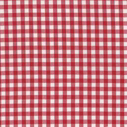 Red And White Fancy Cotton Checks Fabric