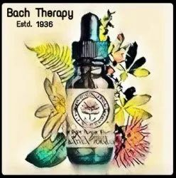 Bach Therapy Consultation