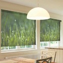 Customized Printed Roller Blind