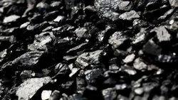 Pharma Coal, Size: 0-60 mm