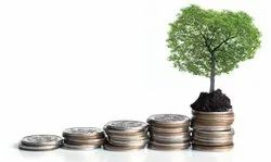 Equity Investment Advisory Services